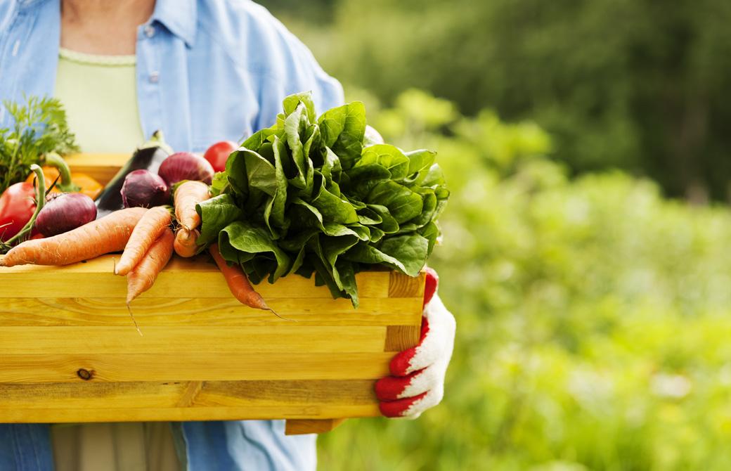 野菜の入った木箱を抱える人