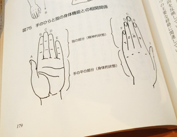 指の反射区
