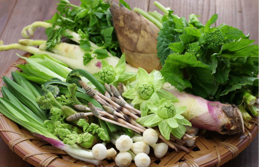 苦味がクセになる春野菜