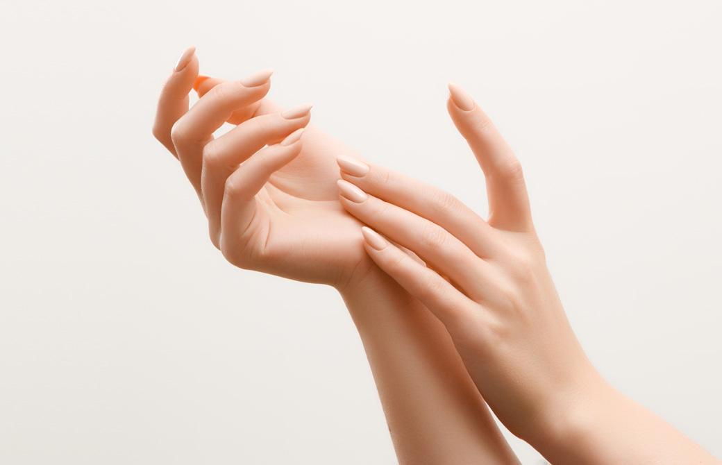 美しく整った女性の手