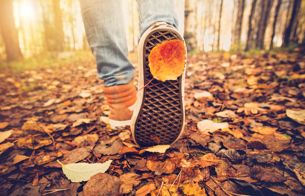 落ち葉の中を歩いている人の足
