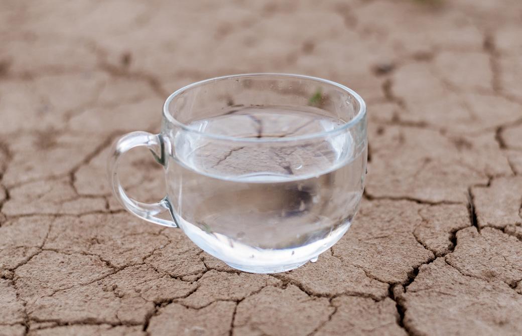 乾燥でひび割れた大地の上の水の入ったカップ