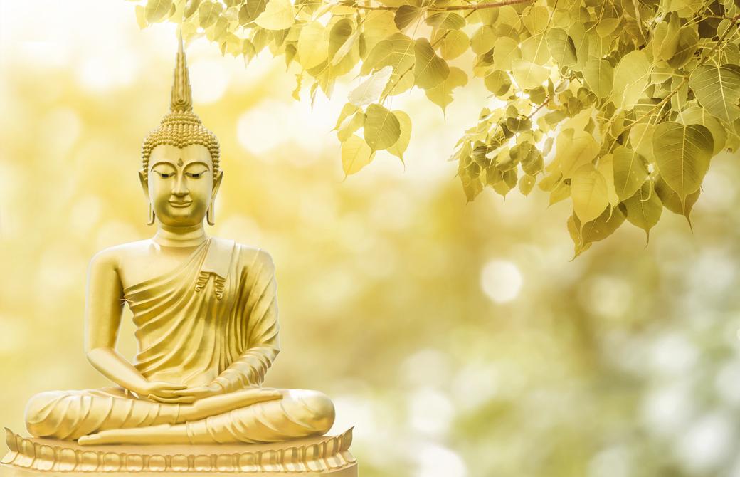 木陰に置かれた仏の銅像