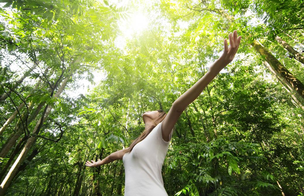 新緑の中で両手を伸ばして上を向いている女性