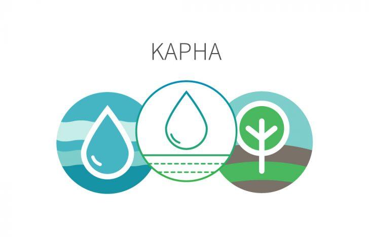 アーユルヴェーダの基礎のキ:ドーシャ「カファ|Kapha」とは?
