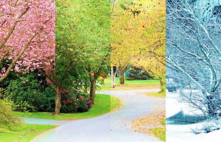 四季が移り変わる様子