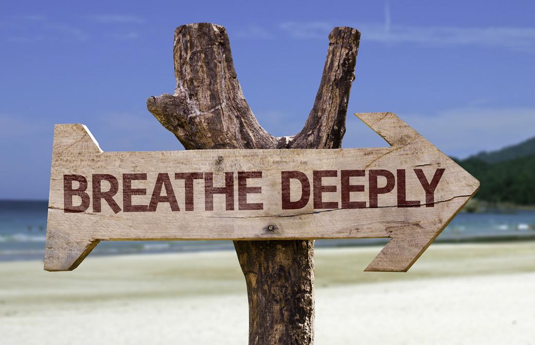 ビーチの木に「BREATHE DEEPLY」の標識がかかっている