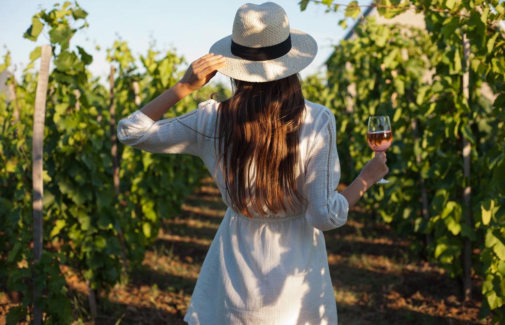 ぶどう畑でワイングラスを手にして帽子をおさえている女性の後ろ姿