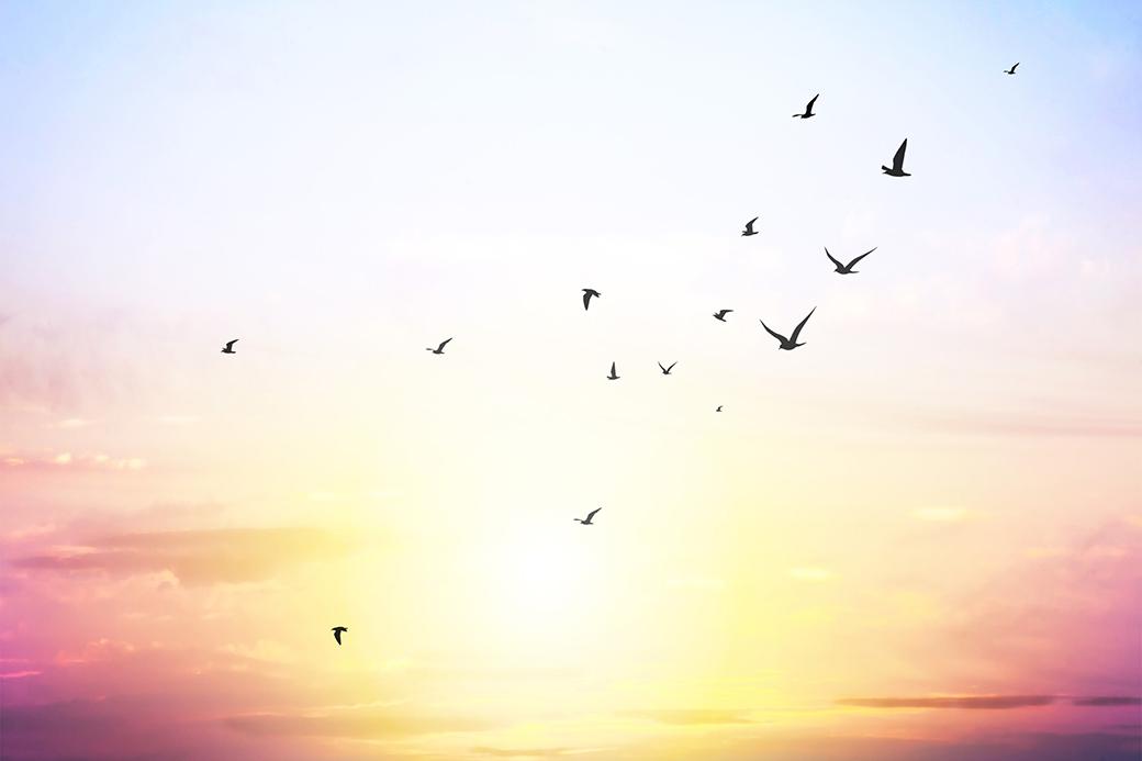 大空のような自由な心