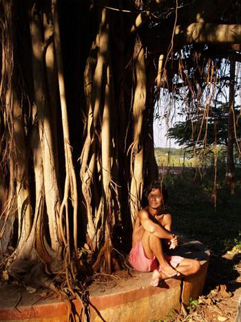 更科有哉がインド・マイソールの大木の下で撮った写真