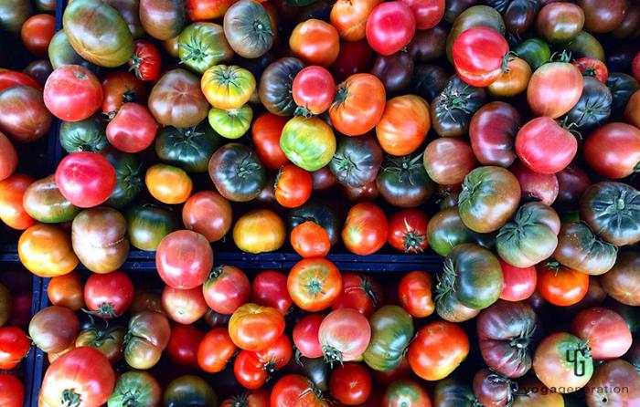 ファーマーズマーケットのトマト