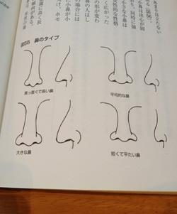 鼻の状態から診察する本を写したもの