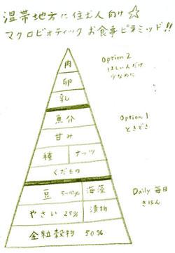 温帯地域に住む人の食物の基準ピラミッド