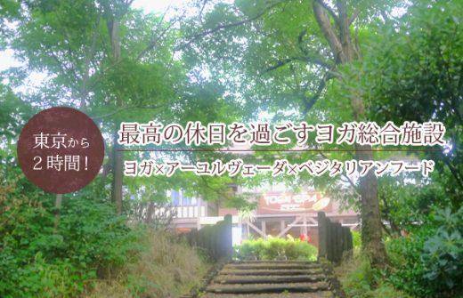 ベジ料理も楽しめる!新潟市のヨガ・アーユルヴェーダ施設『ヨガスパ』をご紹介!