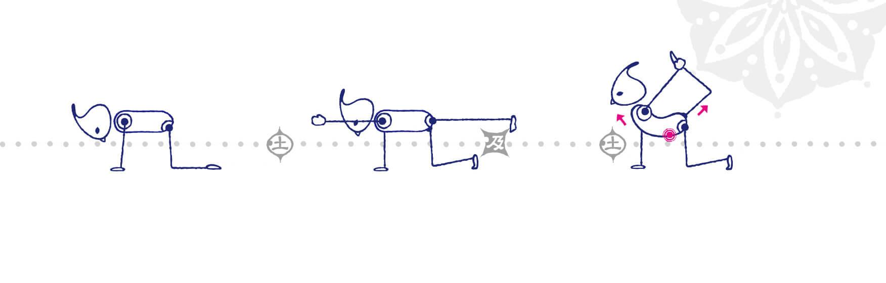 背骨全体を伸ばすのがポイント