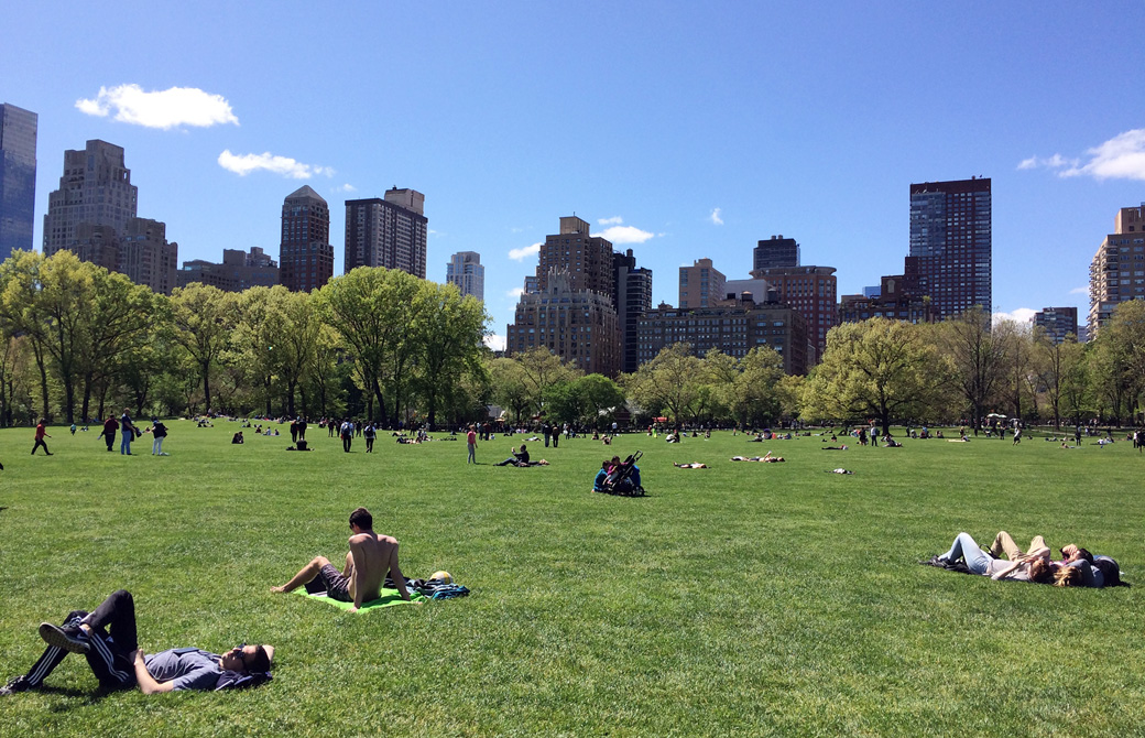 Mahokoのブログ ニューヨークの「セントラル・パーク」で日光浴を楽しむ人たち