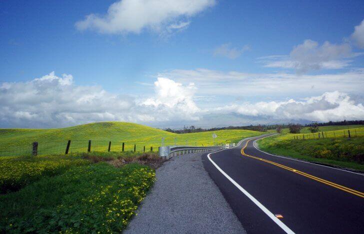 mahokoのブログ ハワイ島の長く続く田園風景