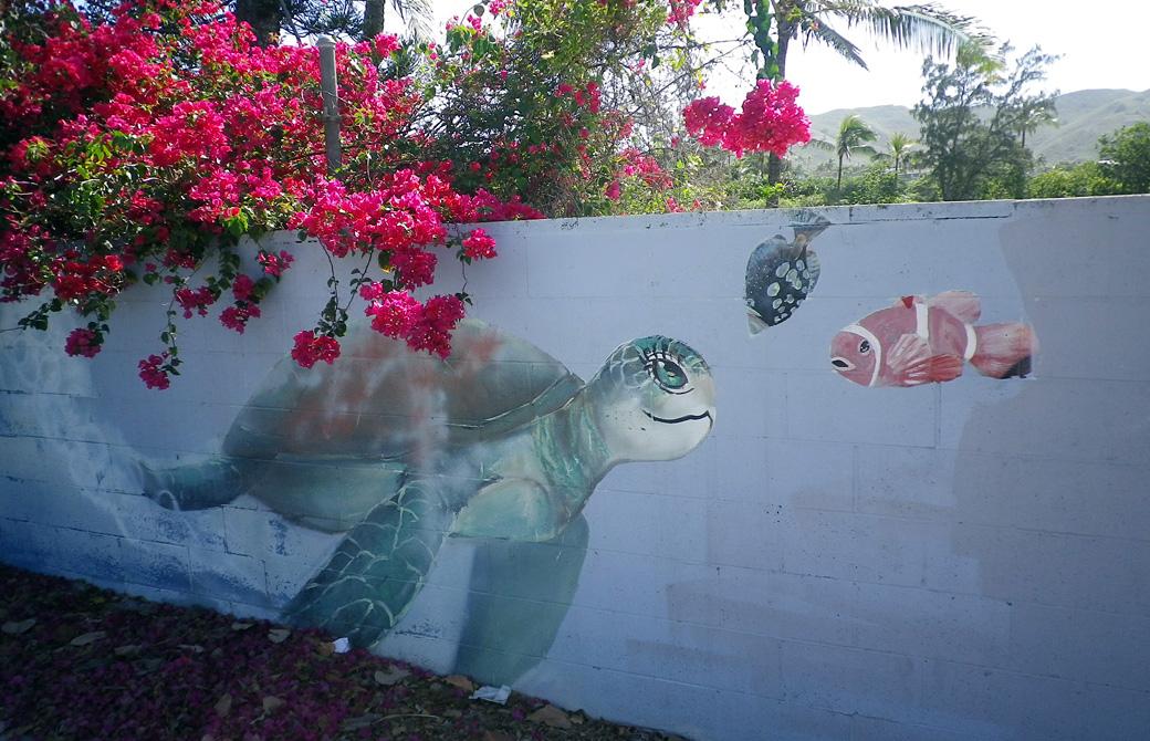 mahokoのブログ カイルアビーチの亀と魚の壁画