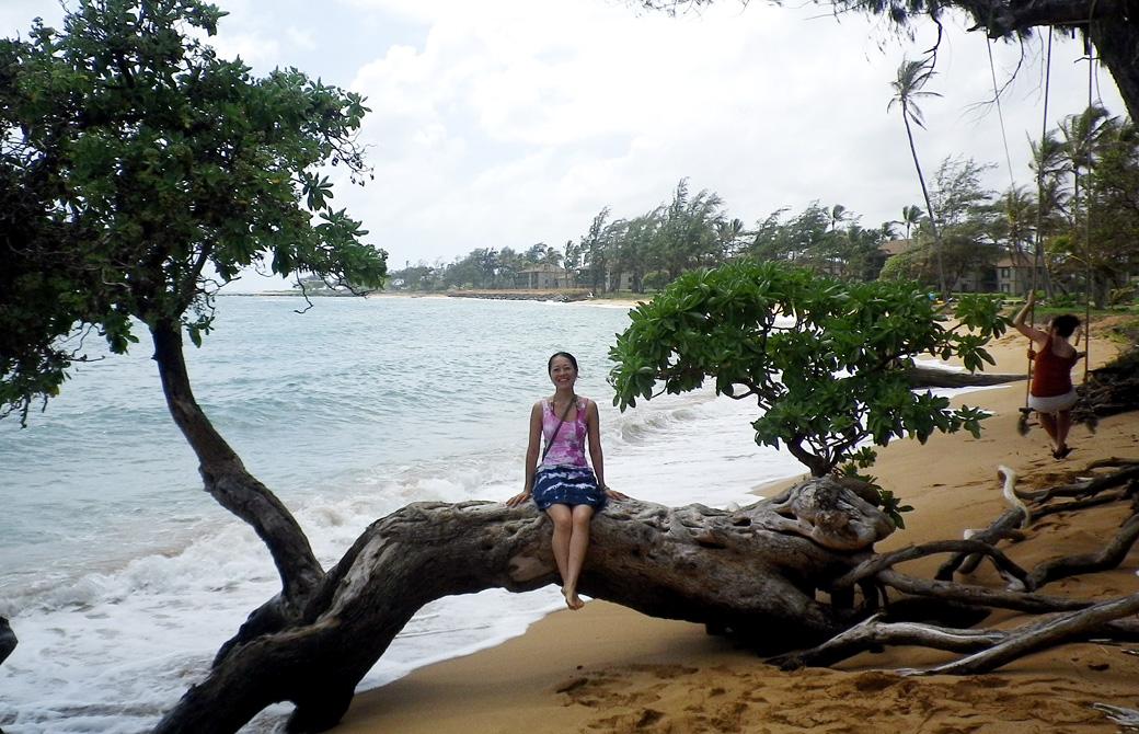 mahokoのブログ:カウアイ島のビーチで木に座っている