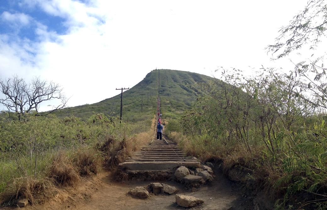 Mahokoのブログ ハワイのハイキングスポット「ココヘッドクレーター」