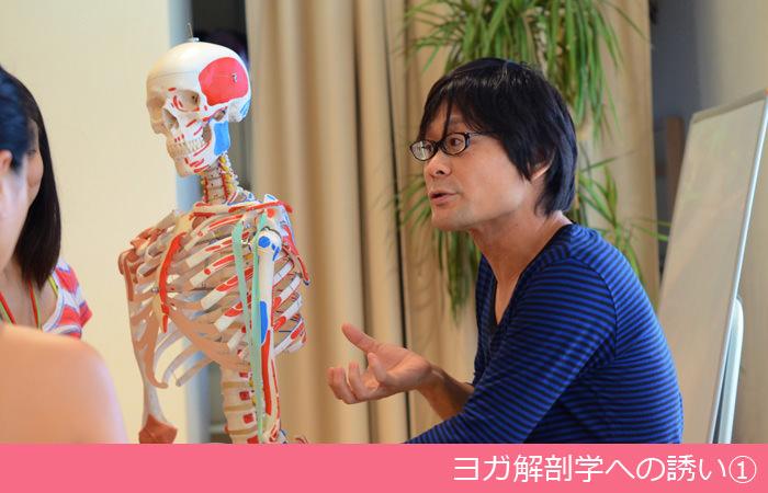 ヨガ解剖学への誘い