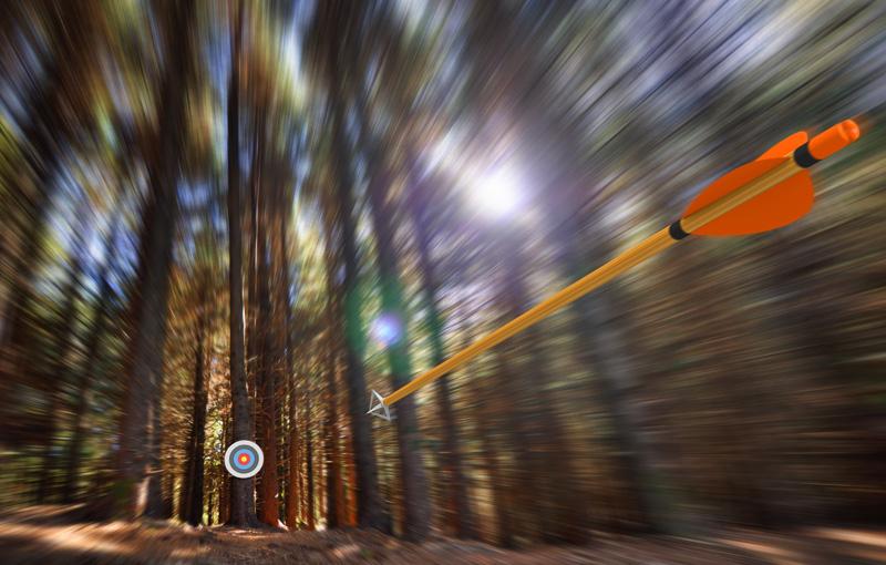森の中ではなたれる矢と的