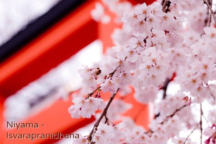 古来から日本人の心に宿るニヤマ(勧戒)の教え