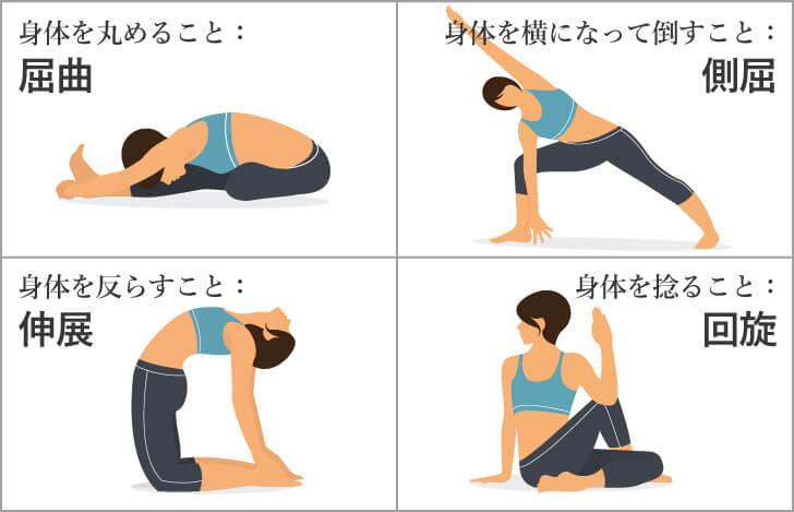 脊柱の基本的な動きの名称