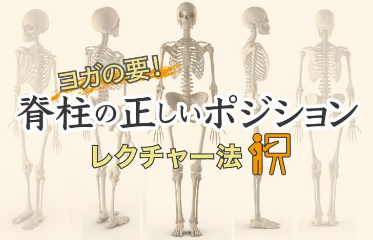 """ヨガの要!""""脊柱の正しいポジション""""のレクチャー法"""