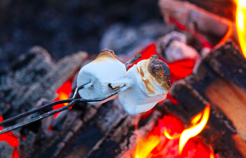焼きマシュマロ(スモア)と焚き火