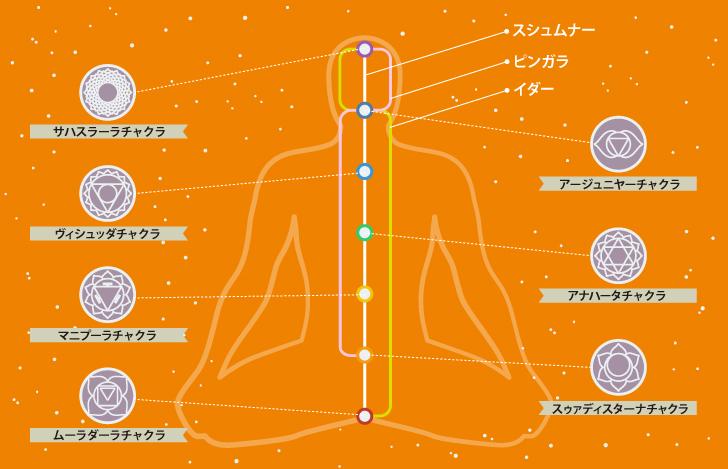 プラーナヤーマで意識しなければいけないのはスシュムナー・イダー・ピンガラの3つの気道
