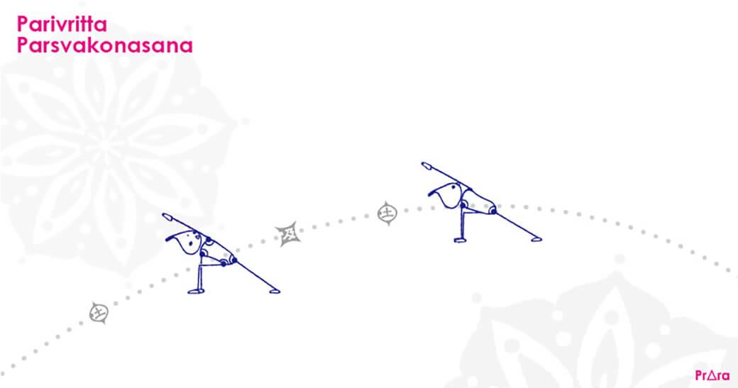 パリブリッタ・パールシュバコナーサナはアシュタンガのプライマリーでも登場するポピュラーなアーサナ
