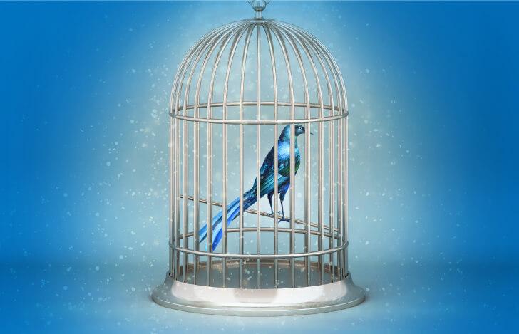 旅から帰ったチルチルとミチル。幸せの青い鳥は、ずっと自分たちの側にいたことを悟る