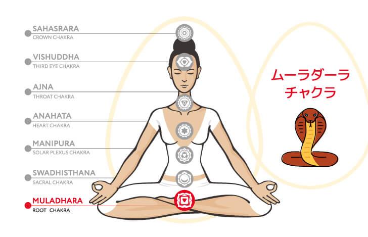 アナンタはムーラダーラ・チャクラの象徴