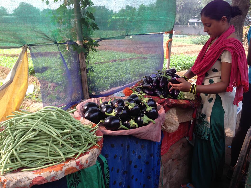 新鮮な野菜のマーケット