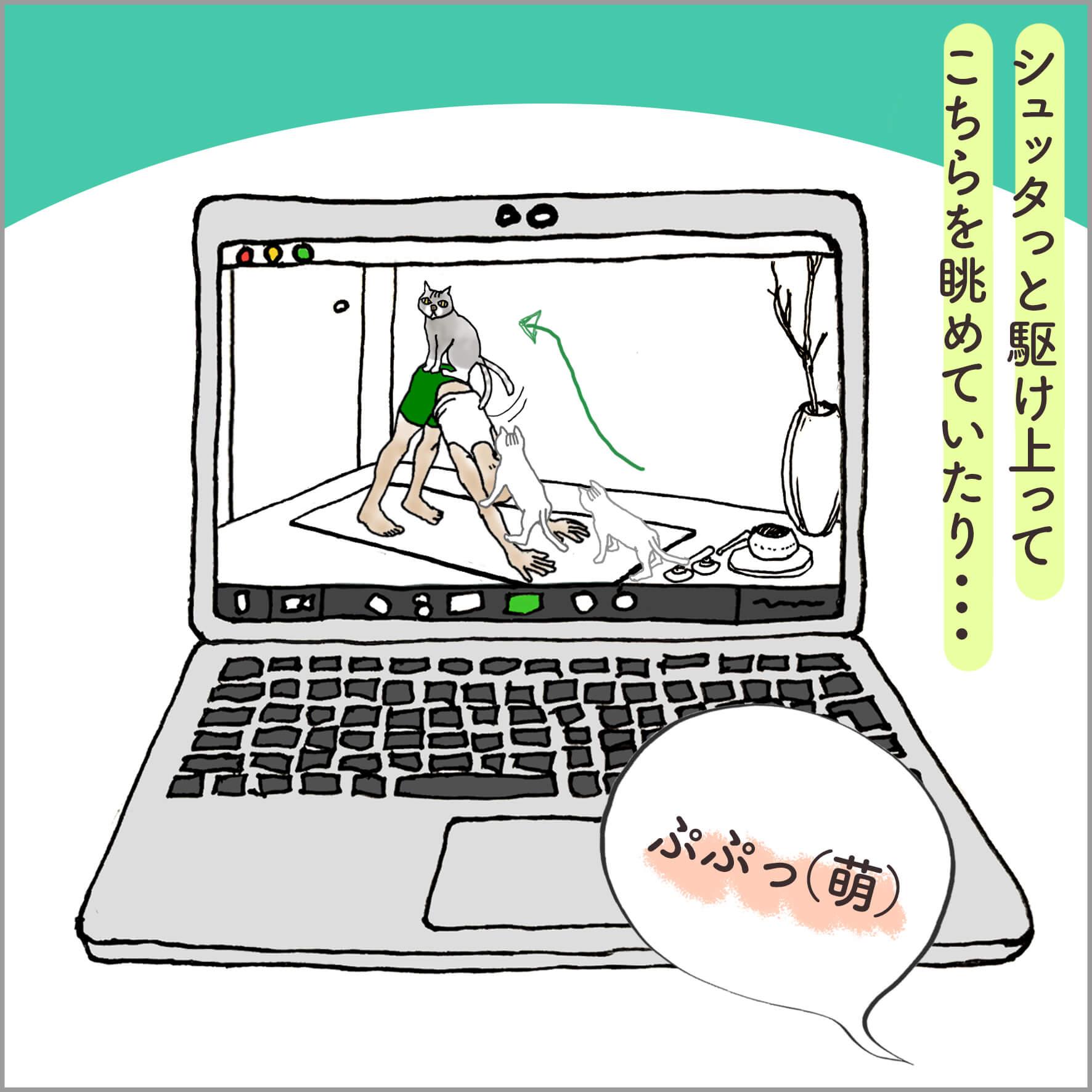 PCの画面に映るダウンドッグをとるヨガの先生とその上に登る猫