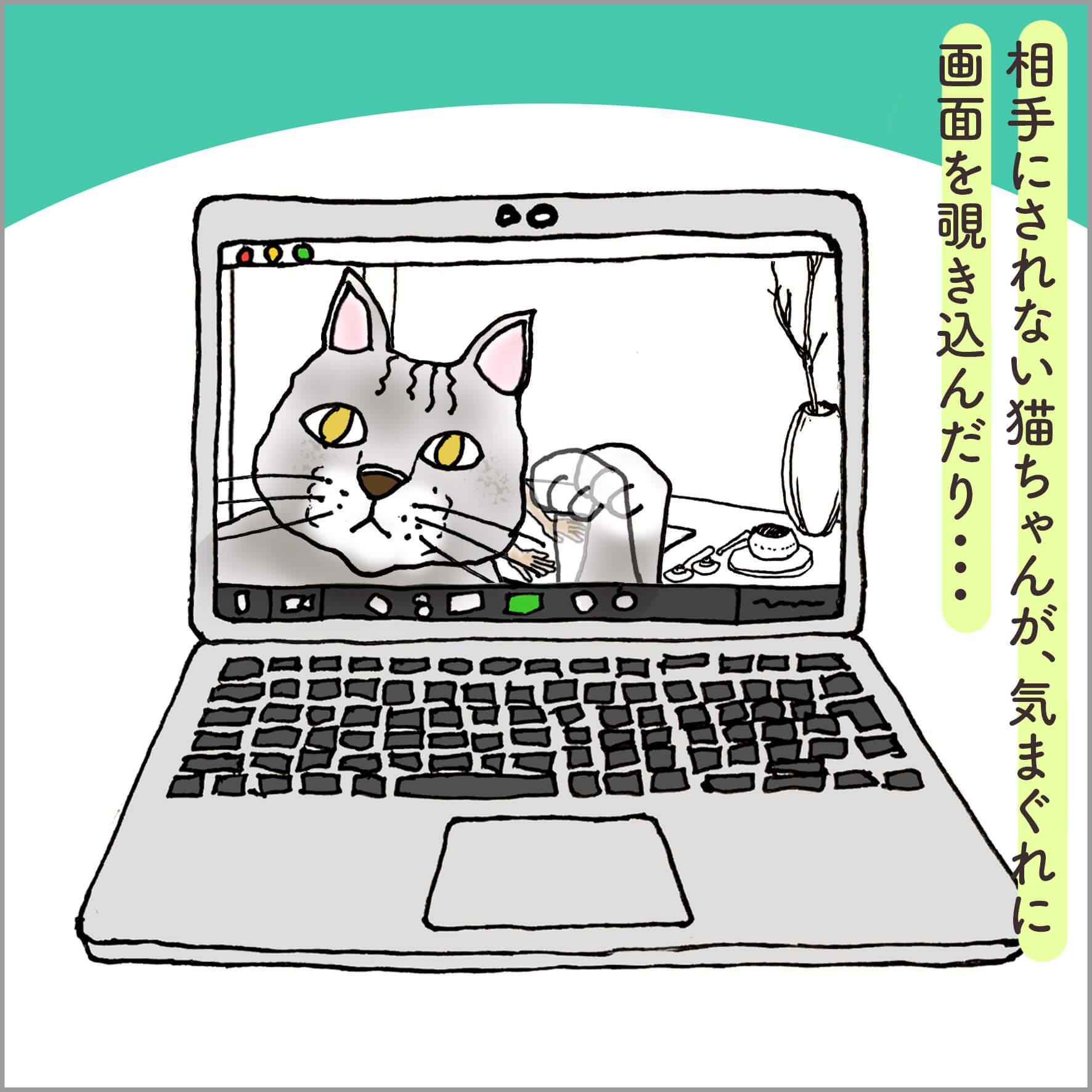 PCの画面に映る猫の大きな顔