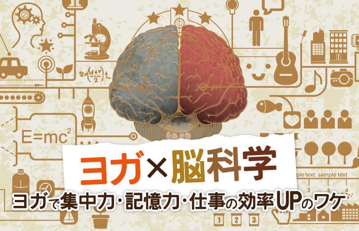 ヨガ×脳科学:ヨガで集中力・記憶力・仕事の効率UPのワケ