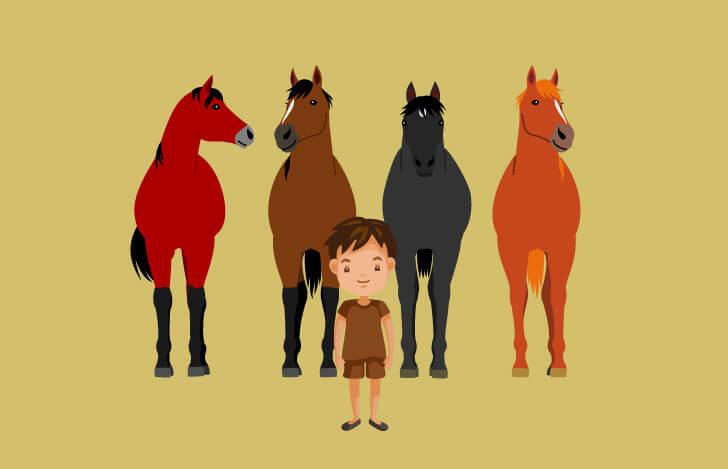 馬を従えるように、心や感覚と関係性をつくる