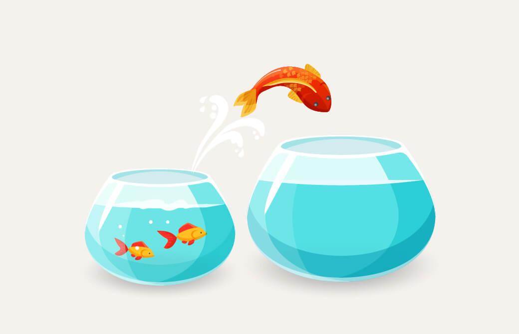 金魚が大きな水槽に飛び移るイラスト