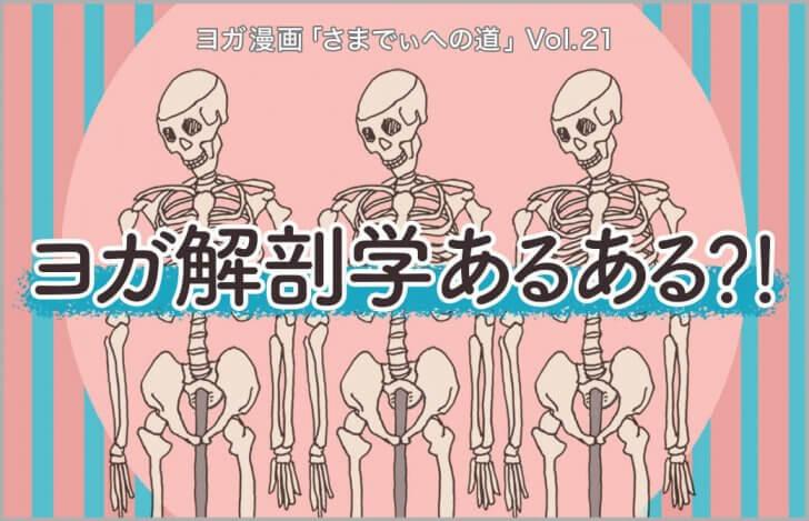3体の人骨模型