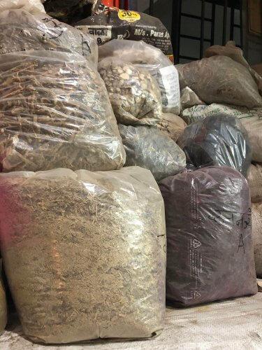 インドではこんなにたくさんの薬草を目にるすことができる