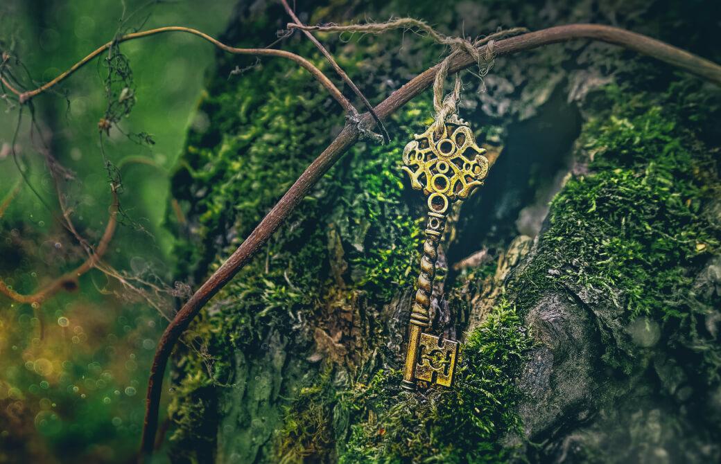 苔の生えた木の幹に鍵がついている写真