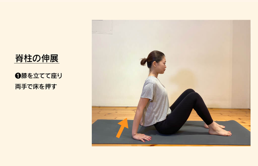 脊柱の伸展エクササイズ