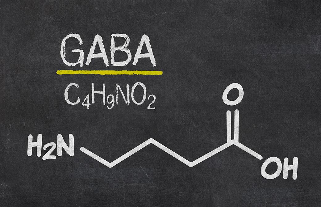 ストレスを和らげてリラックスさせるなど、精神を安定させるのがGABAの成分