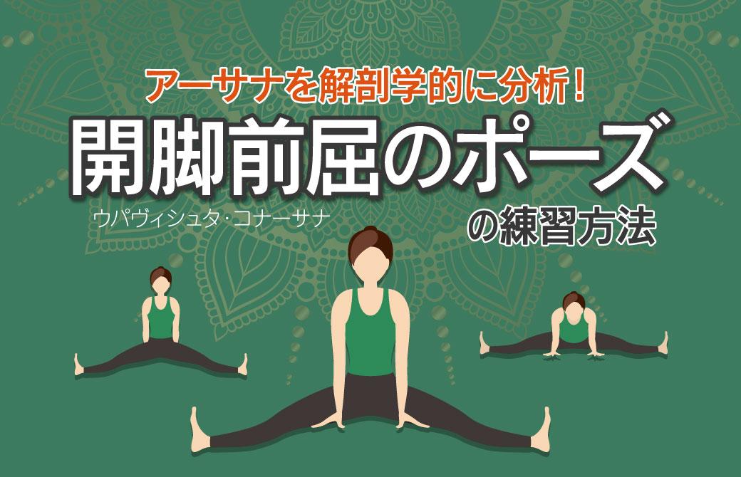 アーサナを解剖学的に分析!効果的に行う開脚前屈のポーズの練習方法