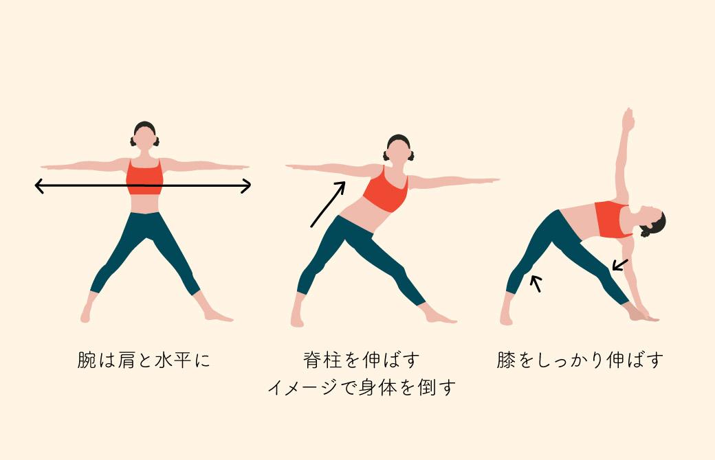 肩と脊柱がポーズの要