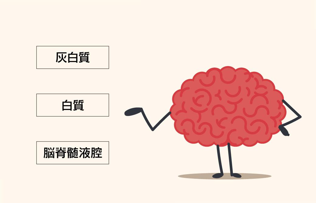 脳の老化は20代から!?