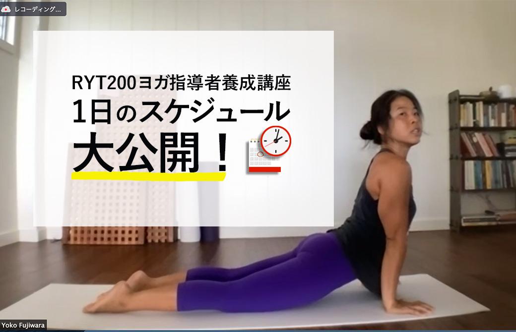 ヨーコ・フジワラRYT200のスケジュール