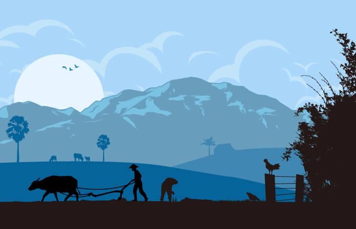 農村の風景
